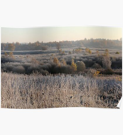 First frost in grassland Poster