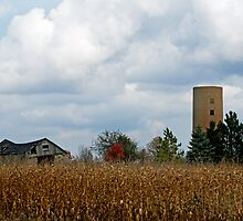 Barn in the cornfield by cherylc1