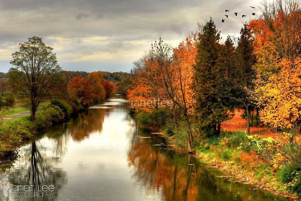 View From the Bridge by janetlee