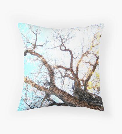 Autumn Sun Through Bare Branches Throw Pillow