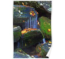 AUTUMN WATERS Poster