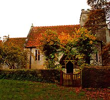 St Mary's Church ~ Odstock by Clive