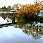Autumn Reflections by gmws