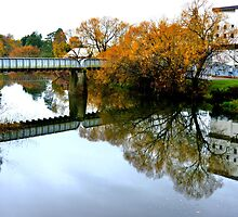 Autumn Reflections by Glenda Williams