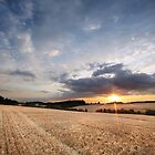 A Delicate Sky Plays with the Evening Harvest Sun by Andy Freer