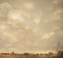 Farmland by Robert Baker