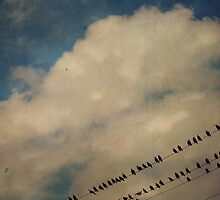 Birds On A Wire by Robert Baker