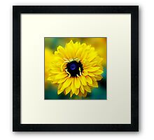 Colour Of Life XXIII [Print & iPad Case] Framed Print