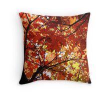 Oak Kaleidescope Throw Pillow