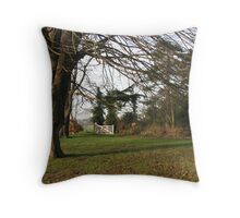 A Cold and Frosty Morning Throw Pillow