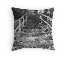 The Clocktower in Farmleigh, Dublin. Throw Pillow