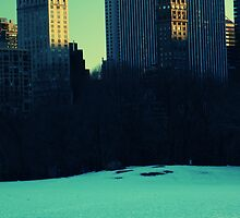 Timeless Snowman in Central Park by McDude
