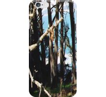Monterey Brush... iPhone Case/Skin