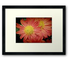 True Autumn Beauty © Framed Print