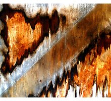 """""""Sawing Continents"""" Photographic Print"""