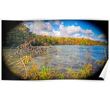 Fall colors at Sandy Bottom Poster