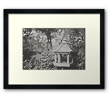 Lonely Bird... Framed Print