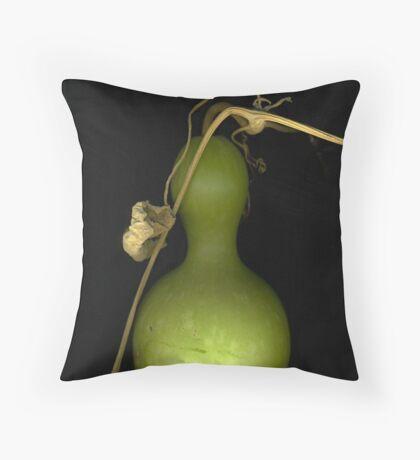 """""""Bird House"""" Gourd Throw Pillow"""