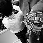 Snake-sleeve by Roman Naumoff