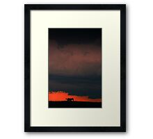 Zebra and Storm Clouds Framed Print