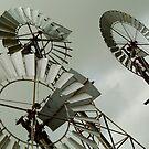 Windmills by Joe Mortelliti