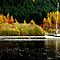 """AUTUMN ON LOCH OICH"" by snapitnc"