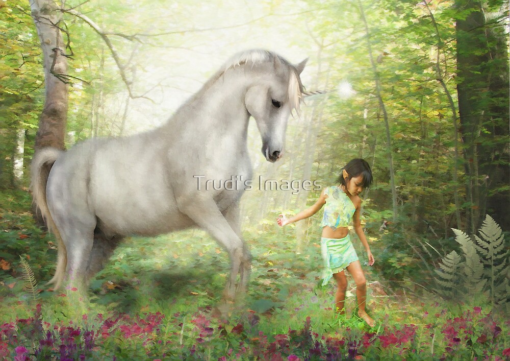 Stella and the Unicorn by Trudi's Images