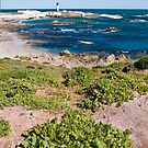 Lighthouse at Doringbaai, South Africa by Fineli