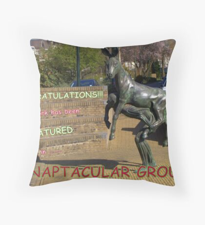 fOR THE cHALLENGE Throw Pillow