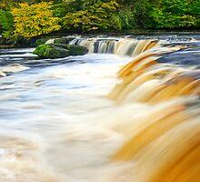 Aysgarth Falls by Stephen Knowles