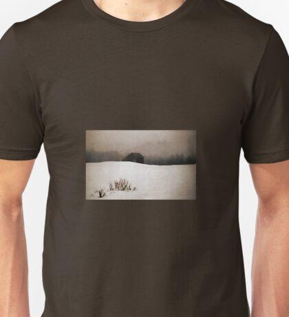 Old Barn - Fog & Snow T-Shirt