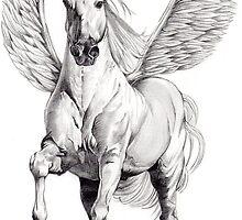 Pegasus by Judith Selcuk