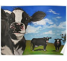 Cows in the Meadow Poster
