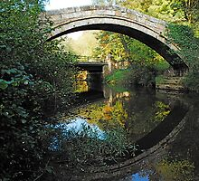 Beggars Bridge, Glaisedale, North York Moors  by dougie1page3