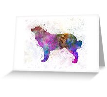 Bernese mountain dog in watercolor Greeting Card