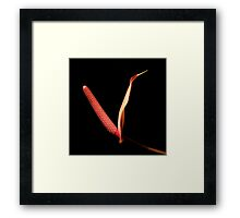 Black With A Hint Of Botanical Element ~ Part Three Framed Print