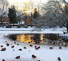 Frozen lake by clydeypops