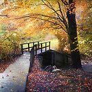 Foot bridge by John Rivera