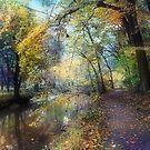 Autumn walk by John Rivera