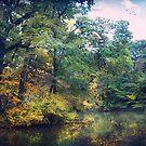 October days by John Rivera