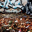 Autumn Leafs Against Graffiti Wall by Dita Rosted
