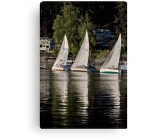 Win, Place and Show Canvas Print