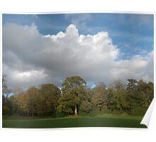 Autumn Landscape Bute Park Cardiff Poster
