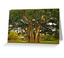 Waimea Dream Greeting Card
