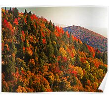 AUTUMN NEAR GRAVEYARD FIELDS Poster