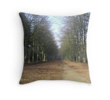The Path To Winter Throw Pillow