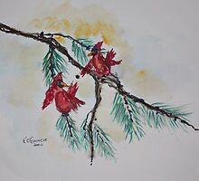 CARDINALS IN PINE by eoconnor