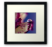 Colour of Life XXXII [square] Framed Print