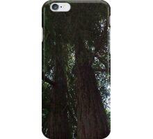 Big Redwood... iPhone Case/Skin