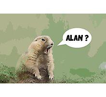 Meerkat - Shouting Alan  Photographic Print